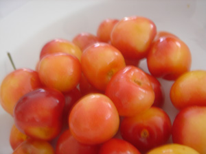 061304RenierCherries