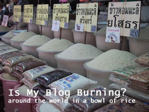 BlogBurningRice