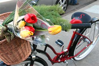 Redbike2